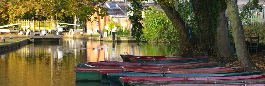 River Wey rowing boats